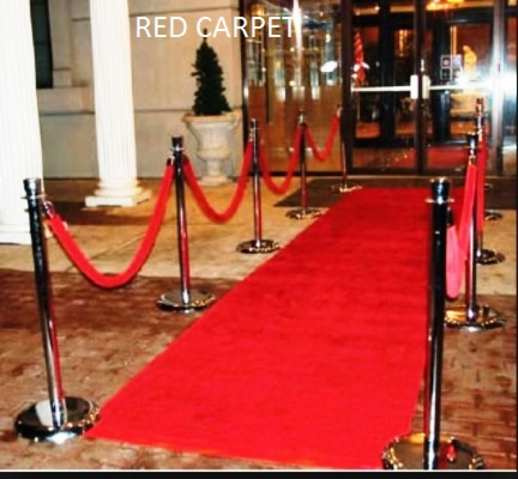 Carpet Runner Walkway 3'x20'