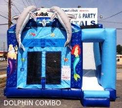 Dolphin Castle